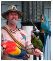 learn more about parrots